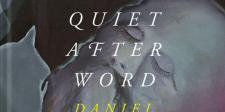 Domig-The-quiet-afterword